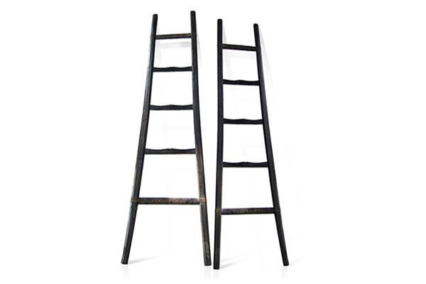 accents_primary_mountain_pine_ladder.jpg